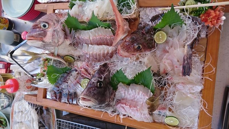http://www.seasea.jp/staffblog/DSC_0482.JPG