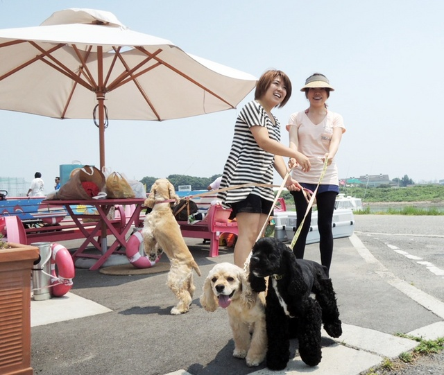 2012.7.28.syoudosima (3).JPG