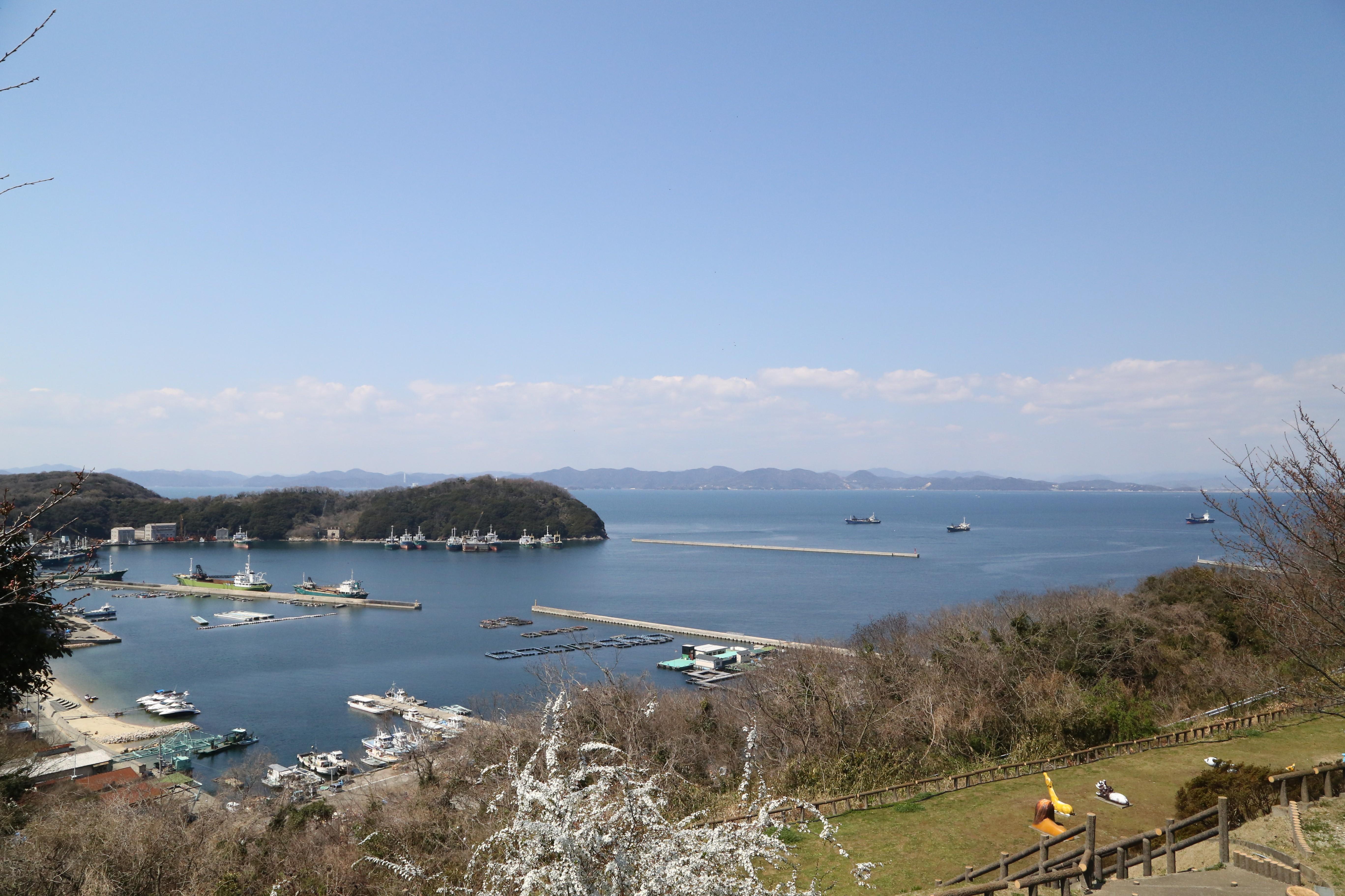 ヤマハ藤田オークマリーナ店から約30分間のクルージングで家島へ到着