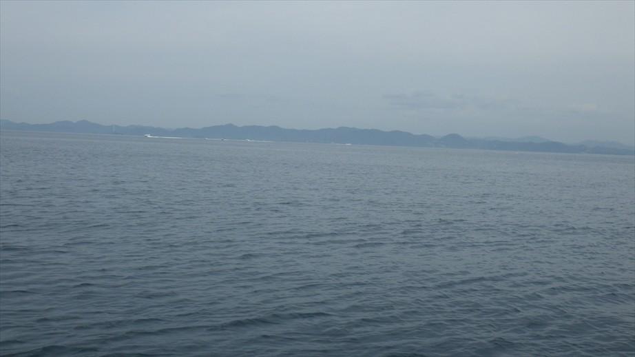お客様が着岸に奮闘されている中、遠ーーくに船の団体が・・・