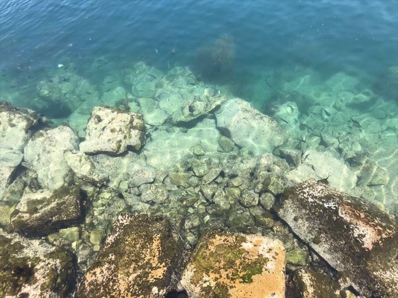 男鹿島の海も綺麗ですよ!