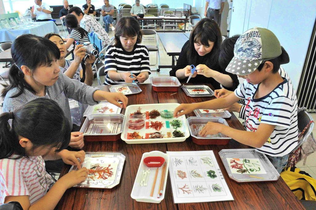 海藻押し葉体験プログラム